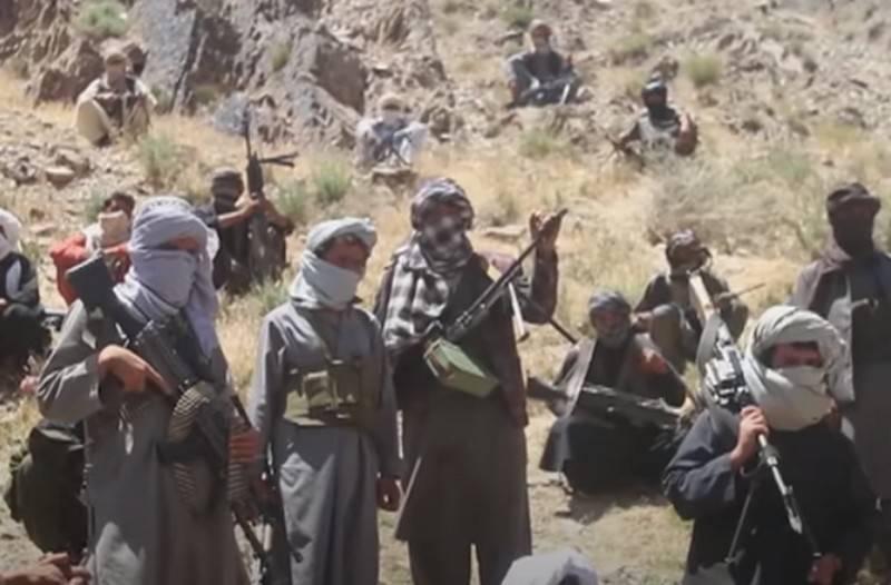 В Сенате США потребовали рассекретить сведения о предполагаемых выплатах России талибам