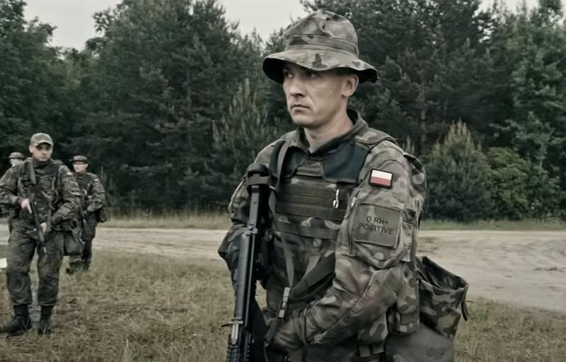 """""""Coprire aree strategicamente importanti"""": la Polonia aumenta il numero di brigate di difesa territoriale"""