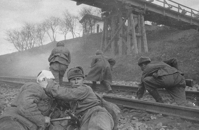 위대한 승리 이야기 : 재향 군인의 눈을 통한 전쟁