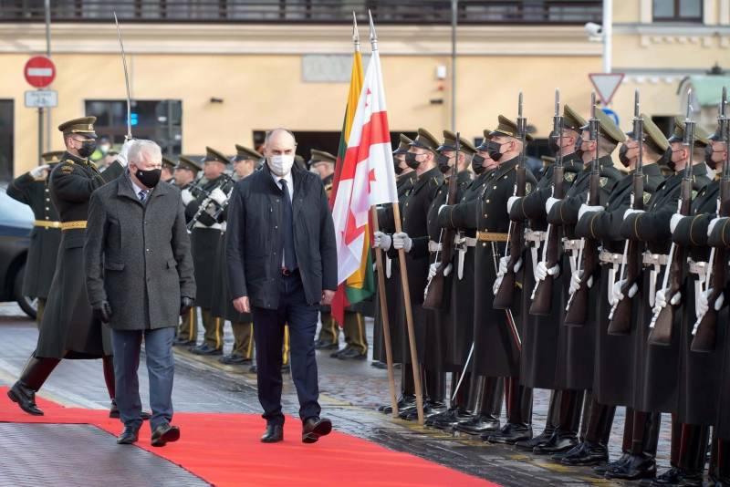 В Вильнюсе ушли от ответа, готовы ли поддержать членство Грузии в НАТО без Абхазии и Южной Осетии