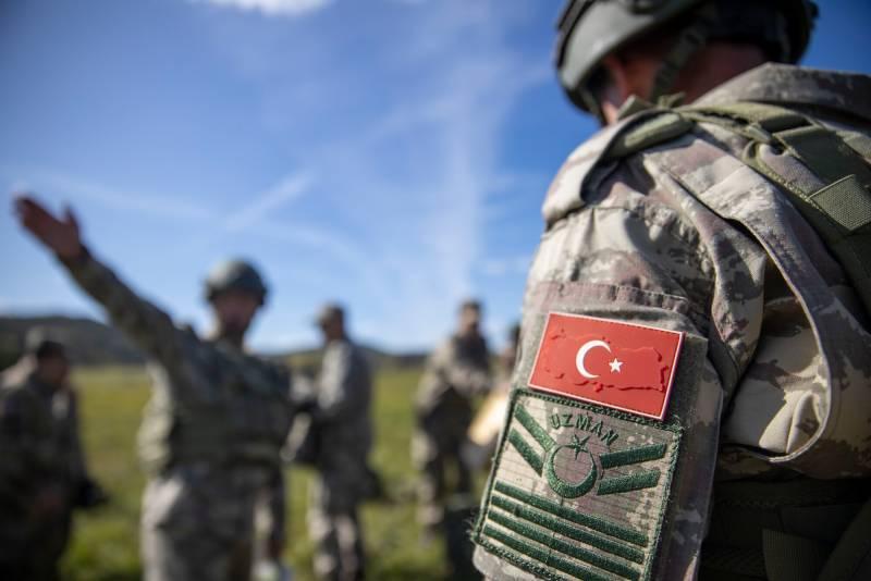 Стальная хватка мягкой силы: Турция в Сирии
