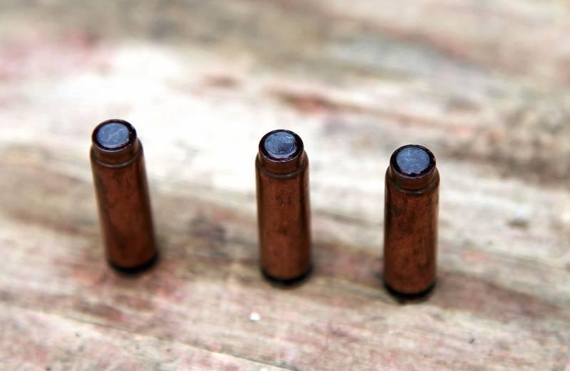 Отечественные проекты бесшумных револьверов: ограниченный успех