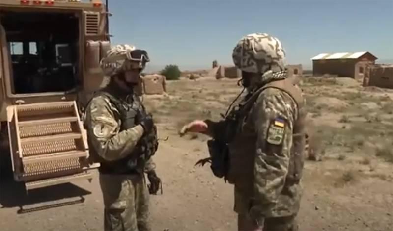 «Руководствуясь целесообразностью и планированием союзников»: Украина вывела своих военнослужащих из Афганистана