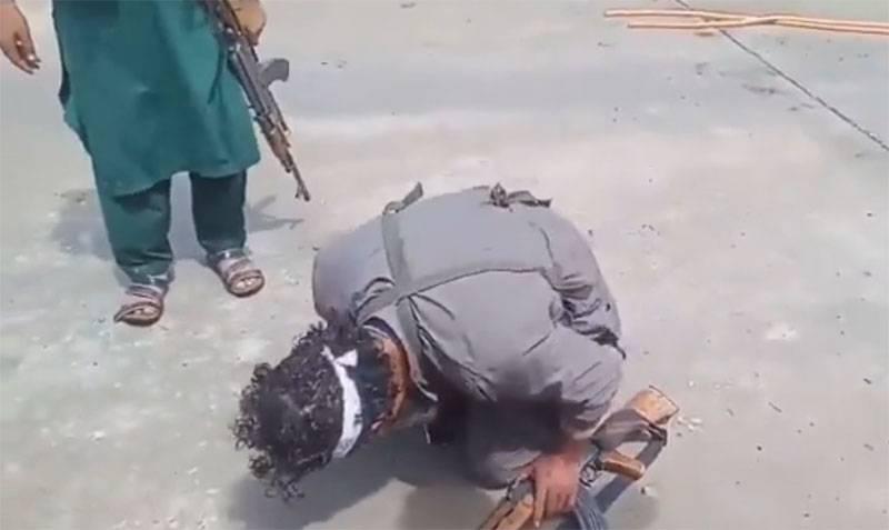 Американский обозреватель: Талибы захватили Афганистан спустя месяц после слов Байдена о том, что это невозможно