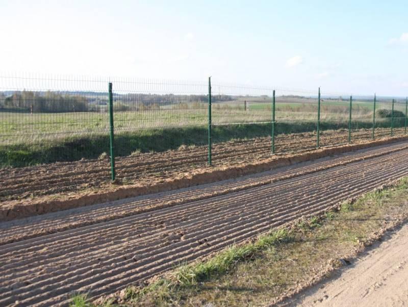 Литовские пограничники заявили о стрельбе в приграничных районах Белоруссии