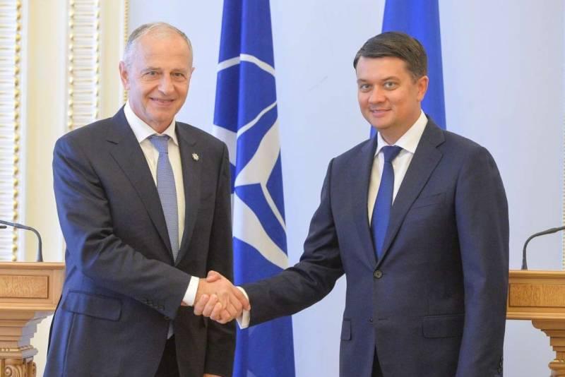 в Верховной Раде рассказали, каким путём Украина движется в НАТО